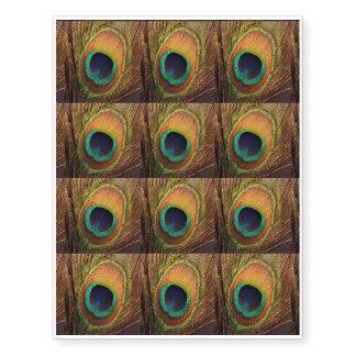 Penas coloridas 4Abby do suporte do pavão