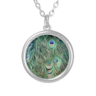 Penas verdes e azuis dos ganhos do pavão colar banhado a prata