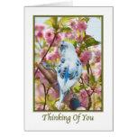 Pensamento de você cartão com papagaio azul