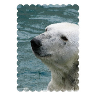 Perfil do urso polar convite 12.7 x 17.78cm