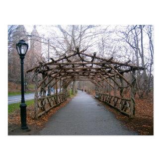 Pergola (Central Park, Nova Iorque) Cartao Postal