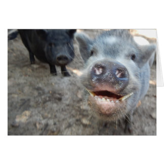 Personalize mini porcos felizes de sorriso cartão comemorativo