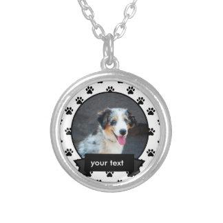 Personalizou sua colar do cão de estimação