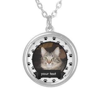 Personalizou sua colar do gato do animal de