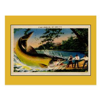 Pesca exagerado do vintage engraçado cartão postal