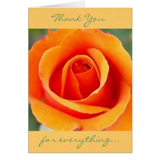 Pêssego/cartões de agradecimentos alaranjados cartão de nota
