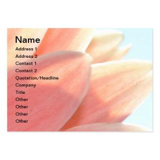 Pêssegos e cartão carnudo do creme cartão de visita grande
