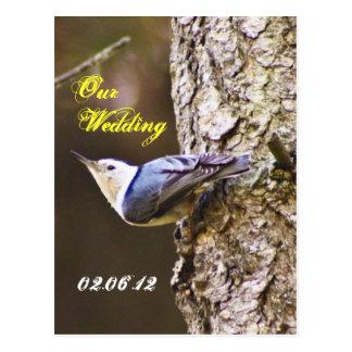 Pica-pau nossa etiqueta do casamento cartão postal