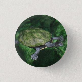 Pin do botão da tartaruga verde bóton redondo 2.54cm