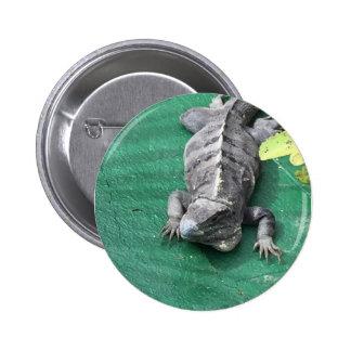 Pin do lagarto bóton redondo 5.08cm