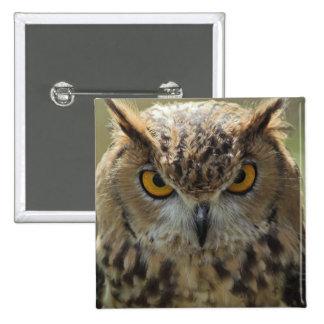 Pin do quadrado da foto da coruja bóton quadrado 5.08cm