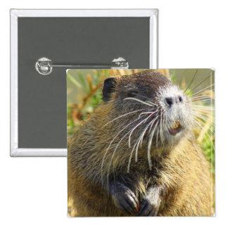 Pin do quadrado da foto do castor bóton quadrado 5.08cm