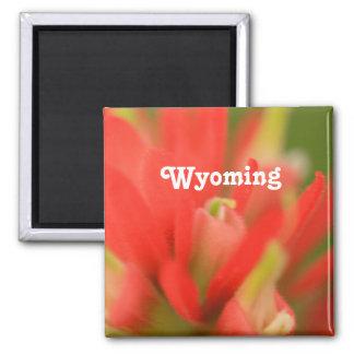 Pincel indiano de Wyoming Ima