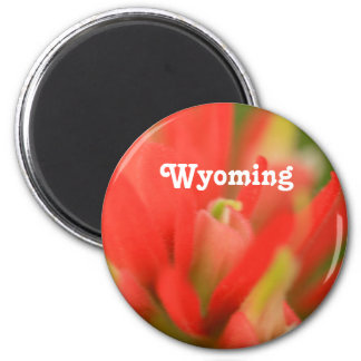 Pincel indiano de Wyoming Imas De Geladeira