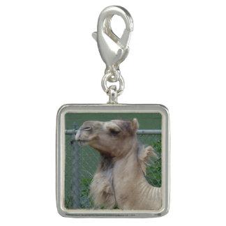 Pingente Encanto chapeado prata do camelo