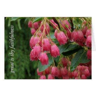 Pingos de chuva em flores de Bell cor-de-rosa Cartão Comemorativo