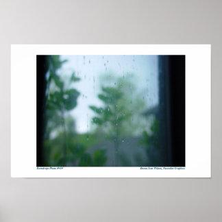 Pingos de chuva na janela: Foto #434 Pôster
