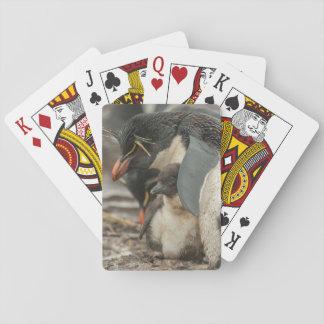 Pinguim e pintinho de Rockhopper Cartas De Baralho