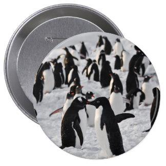 Pinguins no jogo bóton redondo 10.16cm