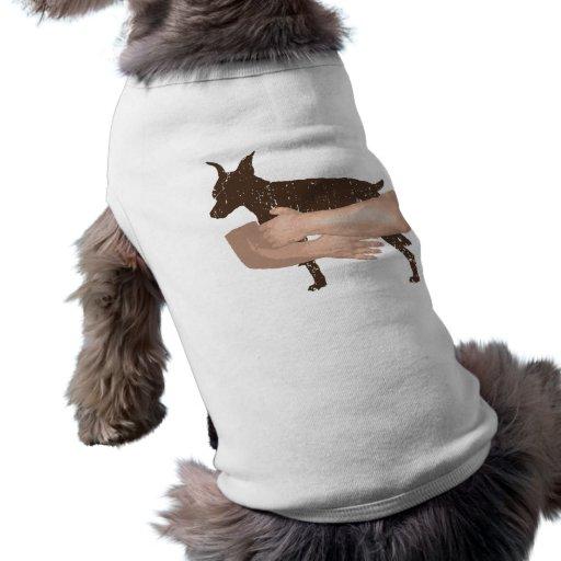 Pinscher diminuto roupas para caes