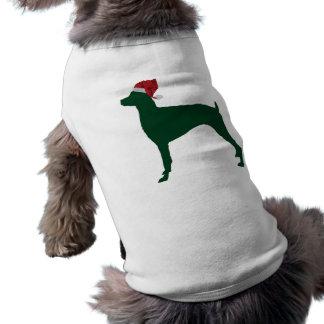 Pinscher do Doberman Roupa Para Cães
