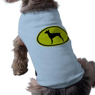 Pinscher do Doberman Camisa Para Cães