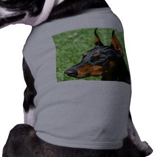 Pinscher do Doberman Roupa Para Pets
