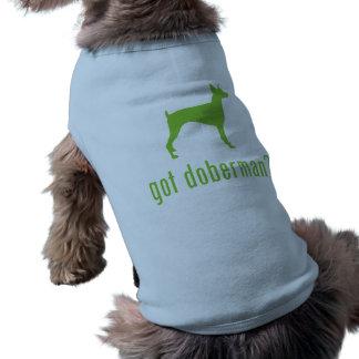 Pinscher do Doberman Roupas Para Pets