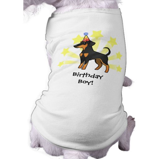 Pinscher do Doberman do aniversário (orelhas flexí Camiseta Para Caes