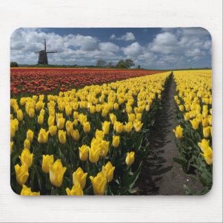 Pintando a paisagem holandesa mouse pad