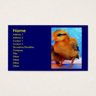 Pintinho-Um-Dee-Luz mim cartão de visita