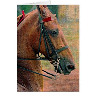 Pintura do falso de Saddlebred Cartões