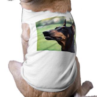 Pintura sonhadora da cara do Pinscher do Doberman Camisa Sem Mangas Para Cachorro