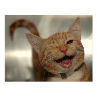 Pisc o gato feliz do gengibre cartoes postais