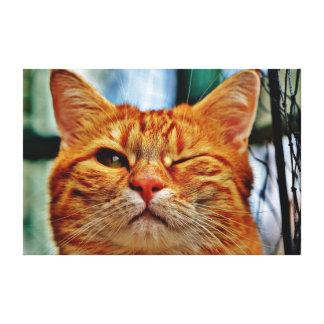 Piscar os olhos do gato impressão em tela