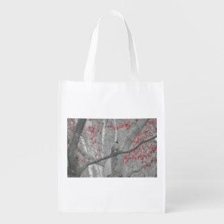 Pisco de peito vermelho do primavera na árvore de sacolas ecológicas para supermercado