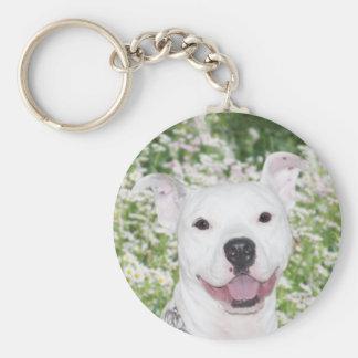 Pitbull branco feliz chaveiro