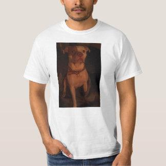 Pitbulls é família tshirts