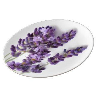Placa da lavanda - coleção de Provence Pratos De Porcelana