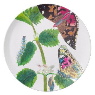 Placa de borboleta da provocação prato