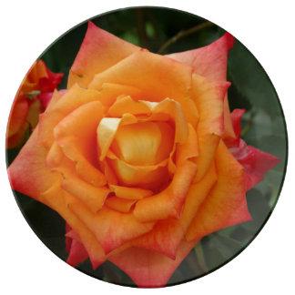 Placa decorativa da porcelana da foto cor-de-rosa pratos de porcelana
