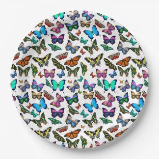 Placas abundante de papel das borboletas