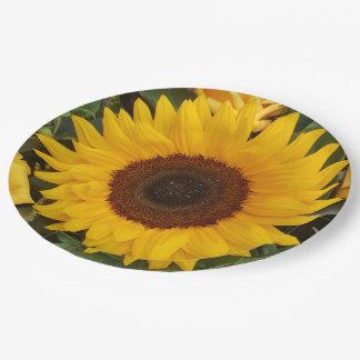 Placas florais da fotografia da flor do girassol prato de papel