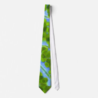Plagiomnium afina pilhas da planta com gravata