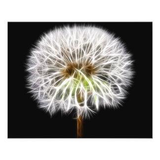 Planta branca da flor do dente-de-leão flyer 11.43 x 14.22cm