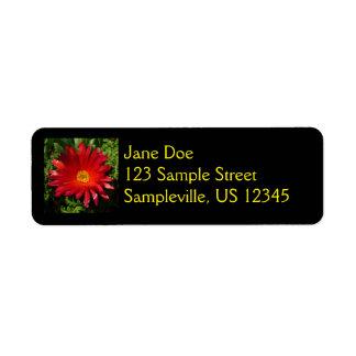 Planta colorida do tapete da flor vermelha do gelo etiqueta endereço de retorno
