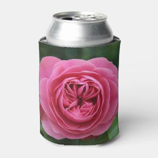 Podem uns rosas mais frescos macro