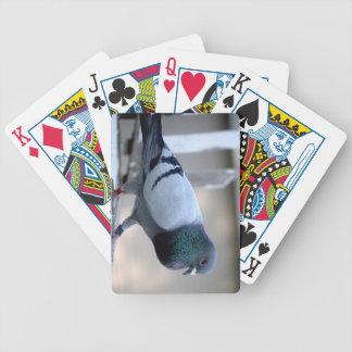 Pombo de direcção nos cartões de jogo do sótão baralho para poker
