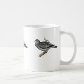 Pombo ou pomba conservada em estoque do estoque caneca de café