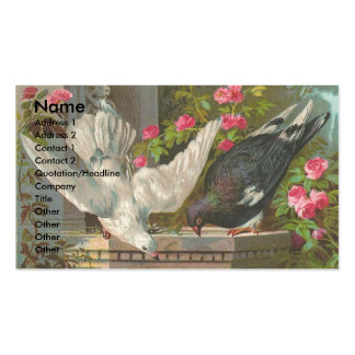 Pombos do vintage cartão de visita